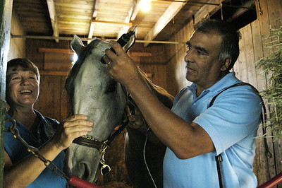Nerio Vargas and his wife Debbie Kral-Vargas, applies a cold laser to one of the many horses they treat to the Saratoga Race Course. Photo Erica Miller 8/30/09 news_AltMedicine3_Mon