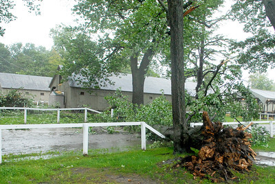 Old trees fall over a horse path directly next to Trainer Todd Pletchers barn on the Oklahoma track at the Saratoga Race Course during the morning hours as Tropical Storm Irene hits Saratoga Springs Sunday morning. Photo Erica Miller 8/28/11 TropicalStorm3