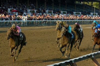 Ramon Dominguez brought in Conspiracy for the win of  the 7th race at the Saratoga Race Course on Friday evening. Photo Erica Miller 8/31/12 spt_7thRace_Sat