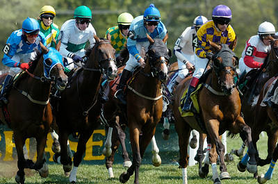 Steeplechase first race on Thursday at the Saratoga Race Course, on Thursday they announced that the Steeplechase Festival was canceled. Photo Erica Miller 8/30/12 news_Canceled2_Sat