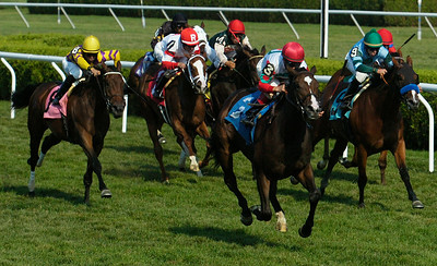 "Sustained ridden Junior Alvarado won the ""Remembering Irene & Lee - The Recovery Continues"" at the Saratoga Race Course. NRYA made at $5,000 donation to assist with rebuilding efforts during a ceremony in the winner's circle following the fourth race. Photo Erica Miller 8/30/12 news_Remembering2_Sat"