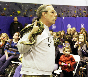 Dean Davis of the Living World Ecology Reptile Show  holds a reticulated python during First Night at Lake Ave. Elementary School. Ed Burke 12/31/10