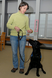 Dianne Martin demonstrates with Rio to sit, who is a 9 month year old puppy for Guiding Eyes For The Blind dog in training. Dianne Martin is a Volunteer puppy raiser for Guiding Eyes For The Blind. Photo Erica Miller 12/28/11 news_GuildingEyes4_Fri