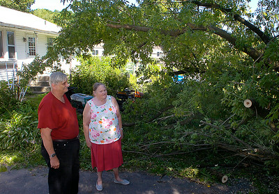 Wednesday's storm brought down limbs from two box elder trees on the property of Eddie and Florence Richmond of North Ave. Ed Burke 7/30/09