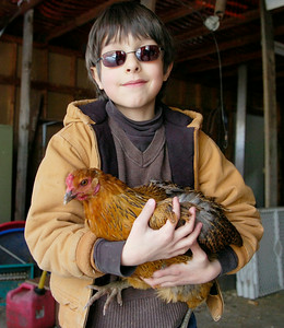 Seven year old Elihu Conant-Haque  holds a hen from his Greenfield flock. Ed Burke 3/30/11