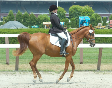 On her mount, Lizzie, Jane Rodd of Ancramdale, New York warms up prior to competing in Saturday's dressage events at Saratoga Race Course. Ed Burke 5/29/10
