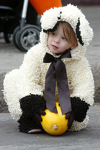 Dressed as a furry sheep Brianna Clark, 2 years old of Saratoga, rolls her pumpkin down Caroline Street for the Pumpkin rolling contest at the annual Fall Festival Saturday morning. Photo Erica Miller 10/30/10 fea_FallFest6_Sun