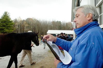 Trainer Bruce Levine glances through paperwork on Coal Play as he is walked outside, who finished second to Big Brown in a Grade I stakes, where he will enter stud at the McMahon of Saratoga Thoroughbred in Schuylerville. Photo Erica Miller 10/31/10 spt_McMahon1_Mon