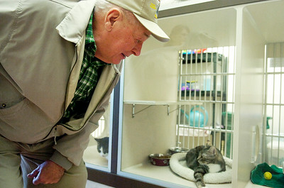 Tom Bush, of Ballston Spa, glance in the window of a cat for adoption at the Grand Opening of the new Saratoga County Animal Shelter in Ballston Spa. Photo Erica Miller 10/30/10 news_AnimalShelter1_Sun