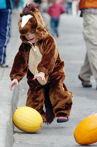 Amelia Copper, 3 years old of Middlegrove, chases her pumpkin down the hill on Caroline Street for the Pumpkin rolling contest at the annual Fall Festival Saturday morning. Photo Erica Miller 10/30/10 fea_FallFest8_Sun