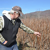 with Meghan story<br /> Gillian Jones/North Adams Transcript<br /> Whether the cold snap Monday night, after a week of summer-like temperatures the week before, will impact area growers, will not be known immediately. Farmer Roger Johnson looks at his raspberry bushes on his organic farm in Hancock.