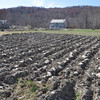with Meghan story<br /> Gillian Jones/North Adams Transcript<br /> While farmer Roger Johnson of Hancock took advantage of the warm weather last week to till his fields, he did not plant anything.
