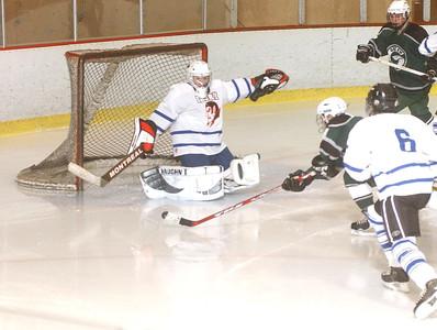 DHS hockey