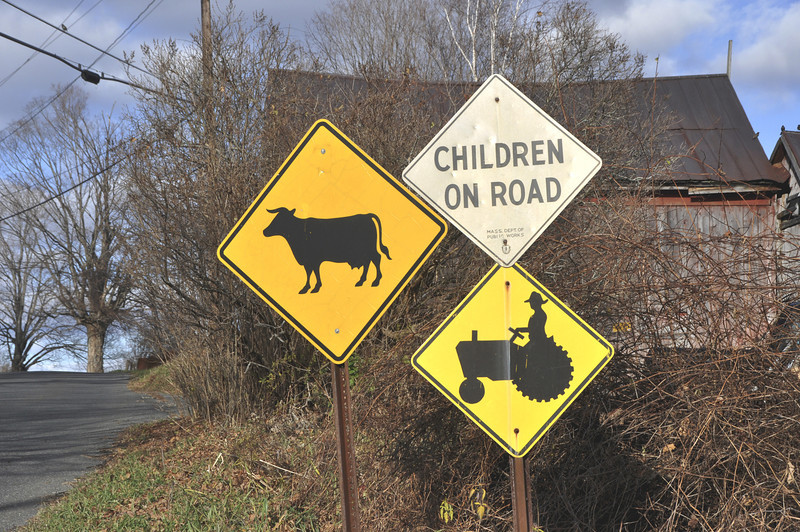 Gillian Jones/North Adams Transcript<br /> This menagerie of signs, reflecting country living, is on East Harbor Road in Cheshire.
