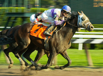 Jockey Richard Migliore rides Success Fee to a close win past Katskill Bay with Maylan Studart up during Wednesday's 8th race at Saratoga Race Course. Ed Burke 9/2/09