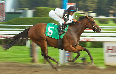 Jockey Alan Garcia guides Lovely Lil to a win in Friday's fourth race at Saratoga Race Course. Ed Burke 9/4/09