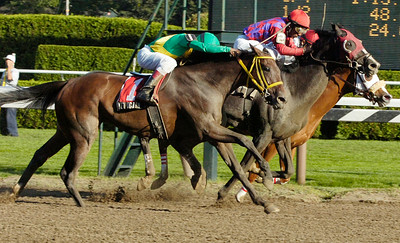 Rajiv Maragh, center riding Dean Henry, finishes by the nose for the 6th Running of the Saratoga Dew Stakes Race followed by Orlando Bocachica riding Yet Again (left) and Jose Espinoza atop My Dinah (far right) at the Saratoga Race Course Monday afternoon. Photo Erica Miller 8/31/09 spt_Dew2_Tue