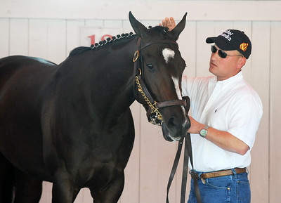 Assistant Trainer Scott Blasi schools Rachel Alexandra in the Paddock at the Saratoga Race Course in preparation for the Woodward Stake Race on Saturday afternoon. Photo Erica Miller 9/3/09 spt_RachPaddock1_Fri