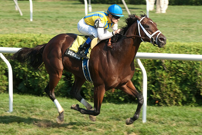 Julien Leparoux took Dominus home for the win during the Bernard Baruch Garde II Saturday. Photo Eric Jenk 9/1/12