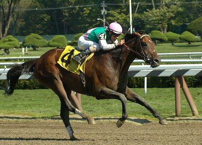 Junior Alvarado and Lunar Victory head for a win in Thursday's 7th race. Ed Burke 8/23/12