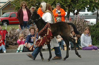 A member of the Native Arabian Horse Society* shows a baby horse and historic garb during the Pony Express Parade of the Azalea Festival on Saturday. The three-day event featured a barbecue, a football game, live music and lots of kids' events.
