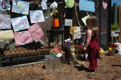 Mark McKenna/The Times-Standard Madeline Estes, 2,  places flowers at the base of Bill's enclosure on Wednesday.
