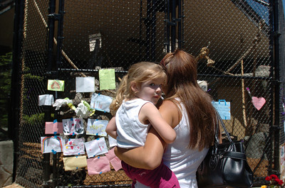 Mark McKenna/The Times-Standard Fortuna residents Caitlin North, 3, and Nicole Mayer visited Bill's enclosure Wednesday and were not aware he had passed away.