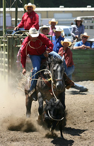 Josh Jackson/The Times-Standard  Cody Jones competes in tie-down roping in the CCPRA Rodeo at the Redwood Acres Fair and Rodeo on Saturday.