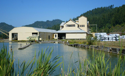 Shaun Walker/The Times-Standard  Pacific Lumber's Mill A sits near an unused log pond in the company town of Scotia on Wednesday. Palco plans to suspend operations for a month at their Scotia mill, and lay off 100 more employees from their Scotia and Arcata mills.