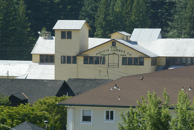 Shaun Walker/The Times-Standard  Pacific Lumber's Mill A sits in the company town of Scotia on Wednesday. Palco plans to suspend operations for a month at their Scotia mill, and lay off 100 more employees from their Scotia and Arcata mills.