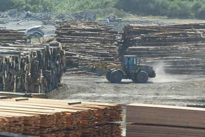 Shaun Walker/The Times-Standard  A Pacific Lumber Co. front loader rolls through lumber yard in Scotia on Wednesday.