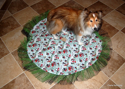 2013 11-24 tree skirt and dog placemat