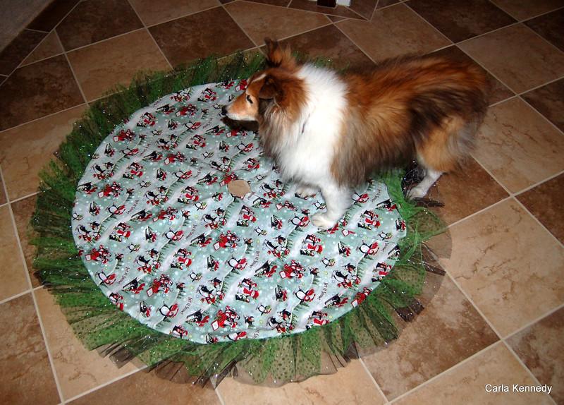 tree skirt for Pamela. Dexter approved