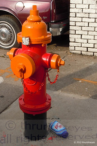 The morning sunlight shining on this orange & red fire hydrant caught my attention.  I'm thinking the Miracle Whip bottle lost the argument.