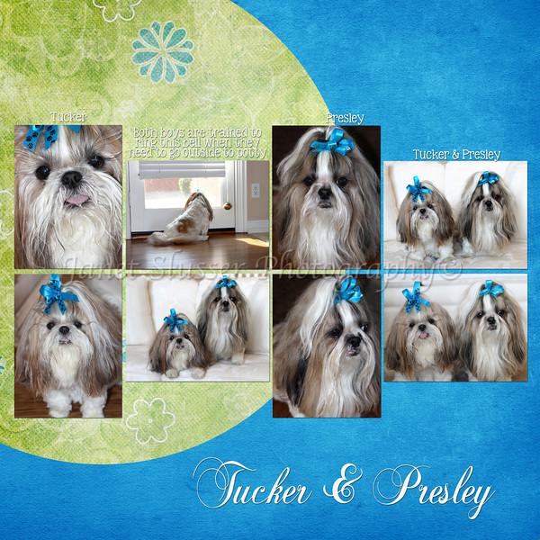 1-11-13 Tucker & Presley-LEFT