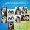1-11-13 Tucker & Presley-RIGHT