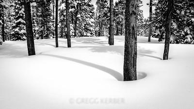 Snow Shdows