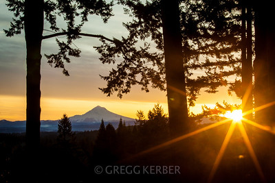 Sunrise Sunburst