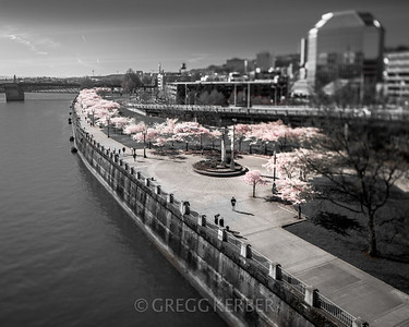 PDX Waterfront