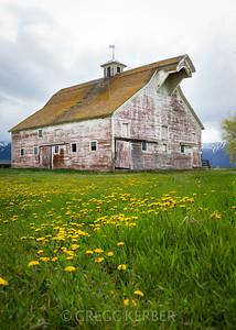Historic Barn (from our Wallowa Wanderlust workshop)