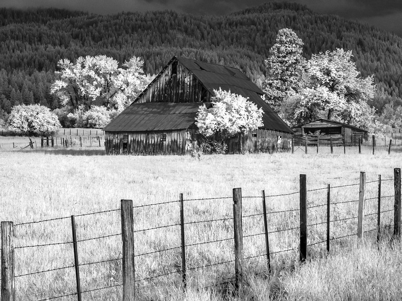 Old barn (Wallowa Wanderlust workshop)