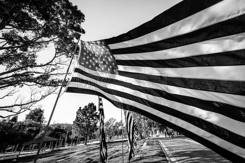 Elks Avenue of Flags-90.jpg