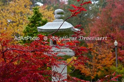 Fall Sarah P. Duke Gardens, NC.