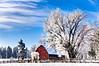 Frosty Farm near Stevensville Montana
