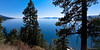 The pines  looking over on Flathead Lake