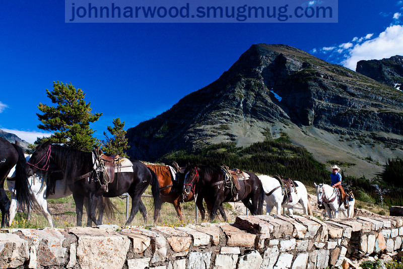 Horseback riding near Many Glacier in Glacier National Park