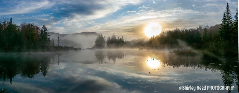 Foggy Sunrise Turtle Head pond