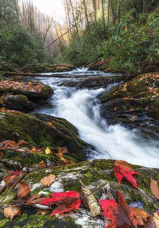 waterfall along Moccasin Creek