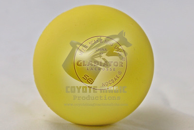 RX0W4537-LRcrop copy-LRcrop-2