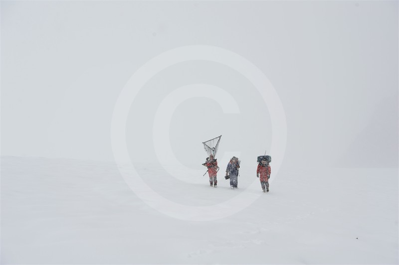 (2152) Field team coming back from work in a snow storm